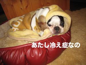 Photo_492