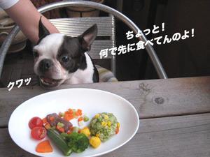 Photo_557