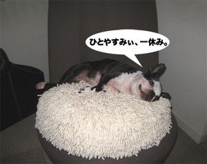 Photo_572